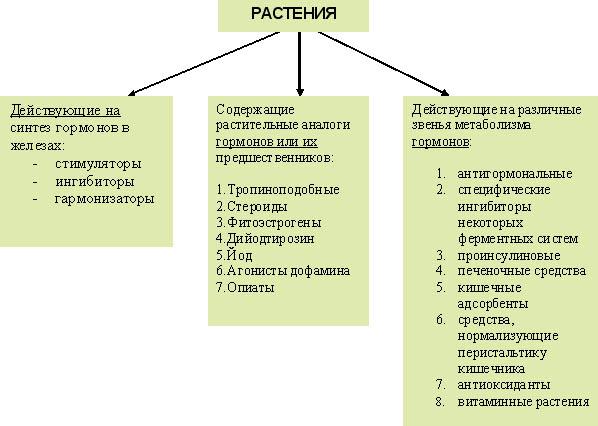 Классификация растений по